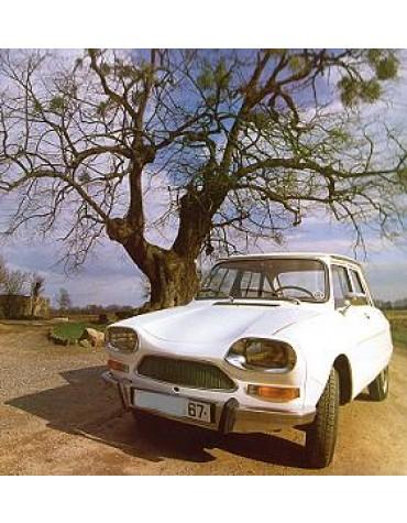 Ami 8 berline blanc stellaire de 1969