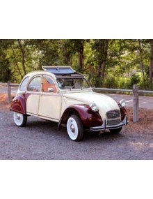 2 CV 6 Dolly jaune Rialto Rouge Delage
